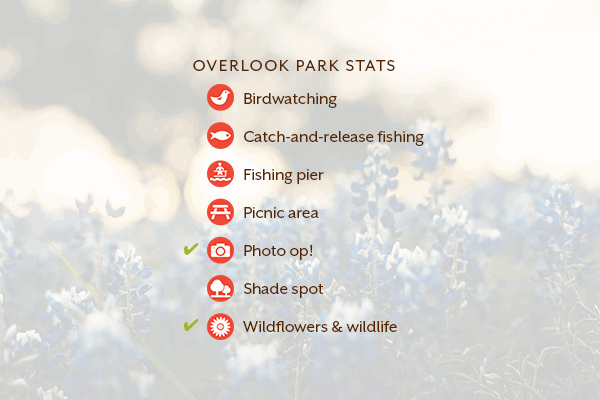 Rancho Sienna Overlook Park Stats
