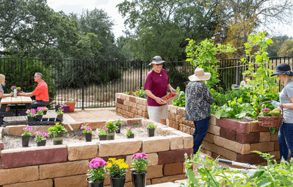 Rancho Sienna - Community Garden 4.png