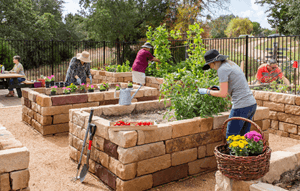 Rancho Sienna - Community Garden 1.png (1)